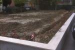 Realizzazione nuovo giardino 8