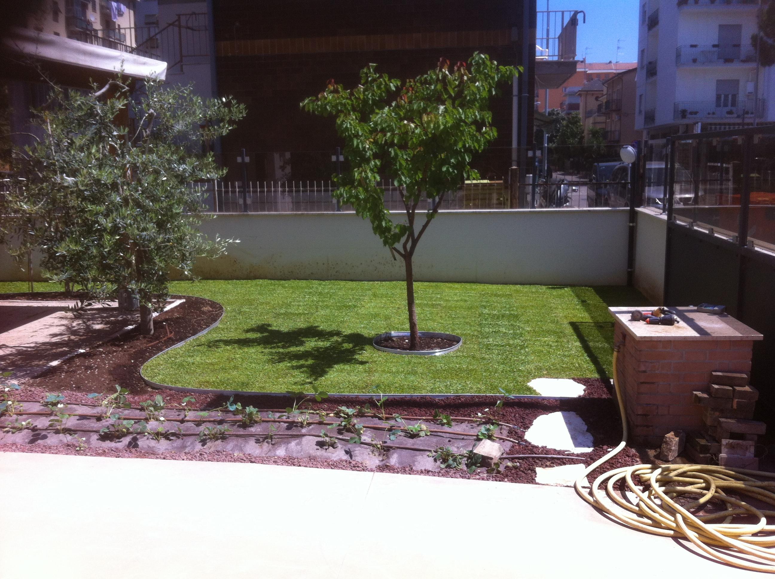 verde ornamentale 2