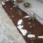 Giardino arido - Tortoreto