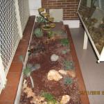 Giardino arido