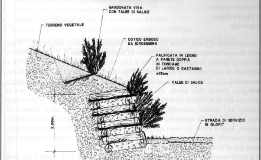 Tecniche Ingegneria Naturalistica.Ingegneria Naturalistica Marche Verde Tecnico